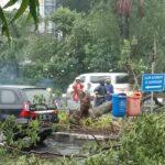 Hujan Deras Disertai Angin Kencang, Jalan di Surabaya Tergenang Air