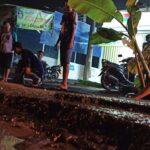 Nyaris Makan Korban, Warga di Sidoarjo Tanam Pisang dan Pepaya di Jalan Berlubang