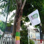 Bendera PKB Dipaku ke Pohon Hiasi Kota Pamekasan