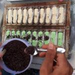 Cerita Ade, Korban PHK Imbas Corona dan Pukis Mini Surabaya