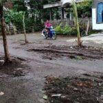 Kesal Tak Kunjung Diperbaiki, Warga Srengat Blitar Tanam Pohon Pisang di Jalan Rusak