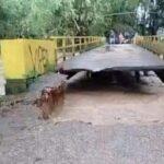 Jembatan Penghubung Dua Desa di Pamekasan Ambruk