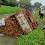 Terperosok Lubang Jalan, Truk Angkut Kayu di Sidoarjo Terguling ke Sungai