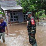 Hujan Deras, Belasan Rumah dan Satu Musala di Situbondo Terendam Banjir