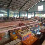 Hasil Tangkapan Nelayan Anjlok, Harga Ikan di Probolinggo Meroket