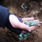 Arkeolog Temukan Tumpukan Koin Emas dan Perak Peninggalan Abad 16