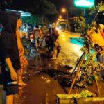 Sejumlah Pemuda 'Tanam' Pohon di Jalan Berlubang Jalur Lumajang-Jember