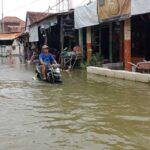Banjir Bengawan Jero Lamongan Meluas, 8 Ribu Rumah Warga Terdampak