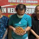 Tiga Warga Binaan Rutan Medaeng Produksi Bumbu Pecel Rasa Pil Koplo