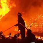 4 Gudang Pengeringan Tembakau di Jenggawah Jember Ludes Terbakar