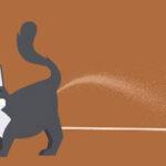 Tips Mengatasi Kucing Pipis Sembarangan