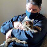 Kucing Ini Bertemu Pemiliknya Setelah Hilang 15 Tahun