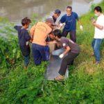 Lagi Berolahraga, Warga di Sidoarjo Temukan Mayat Mengambang di Sungai