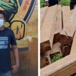 Polisi Bongkar <em>Illegal Logging</em> di Lumajang yang Rugikan Perhutani Rp. 200 Juta