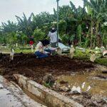 Diduga Isi Jenazah Korban Penganiayaan, Makam di Delta Praloyo Sidoarjo Dibongkar Polisi