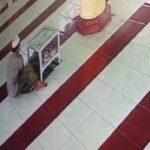 Pencuri Terekam CCTV Kuras Kotak Amal Masjid Attaqwa Situbondo
