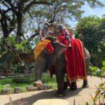 Kebun Binatang Surabaya Tetap Buka di Libur Idul Fitri 1442 H
