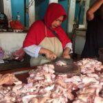 Harga Ayam Potong di Situbondo Mulai Naik, Daging Sapi Super Masih Stabil
