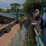 Selama 4 Hari Libur Lebaran, Pengunjung KBS Tembus 17.801 Orang