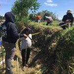 Survei Temuan Batu Bata Kuno di Blitar, BPCB Temukan Setruktur Peninggalan Kerajaan