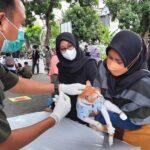Banyuwangi Siapkan 2.400 Vaksin Rabies untuk Hewan Piaraan dan Liar